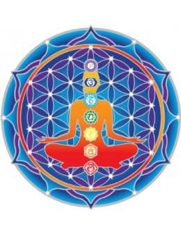 Symbole autocollant pour vitre - Chakras Mandala
