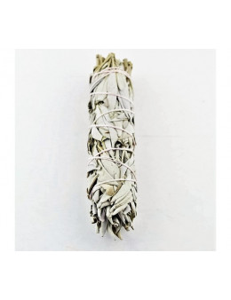 Fagot de feuilles naturelles séchées de sauge blanche amérindienne 12cm 30 g