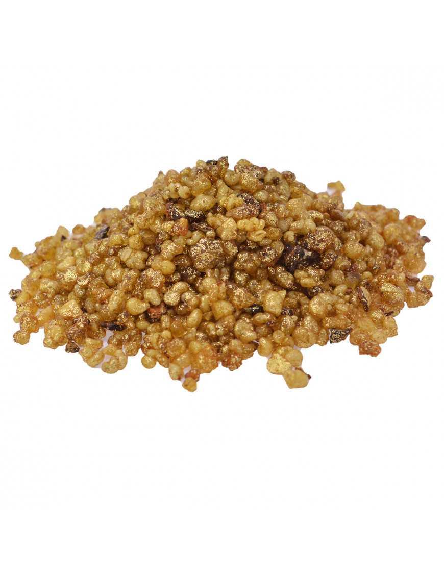 Encens de Salomon en grains