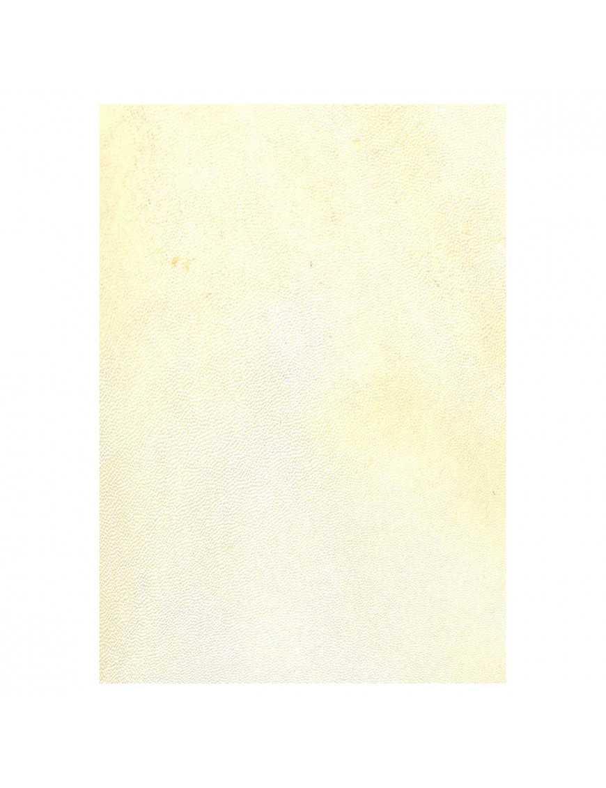 Parchemin animal - Chevreau poil sombre - A4