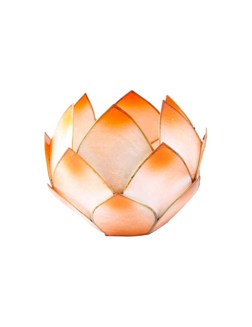 Lotus Crépuscule